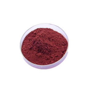 Red Yeast Rice P.E